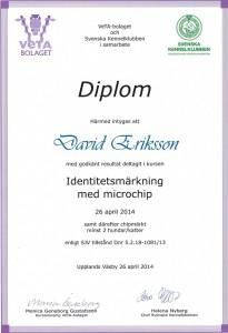 Diplom ID-märkning